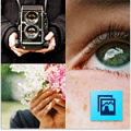 Adobe: Adobe Photoshop Elements 11
