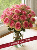 Organic Bouquet: One Dozen Crown Majesty Roses + 12 Free - $69.95