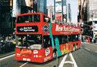 Gray Line New York Sightseeing: All Loops Tour 48 Hour Upgrade Only $76/Adult, $59/Child