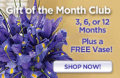 Organic Bouquet: Free Vase With Monthly Bouquet Club Items Purchase