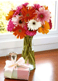 Organic Bouquet: Buy 15, Get 10 Free On Gerberas Daisy - $59.95
