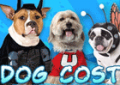 Costume Craze: 30% Off Dog Costumes