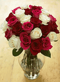 Organic Bouquet: 29% Off 2 Dozen Of Steal A Kiss Roses - $49.95