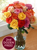 Organic Bouquet: Buy 1 Dozen, Get 1 Dozen FREE Assorted Roses - $69.95
