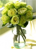Organic Bouquet: St. Patricks Day Gifts