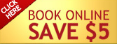 Gray Line New York Sightseeing: $5 Off  Book Online