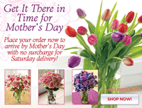 Organic Bouquet: It's Not Too Late-Mother's Day Delivery Still Available!