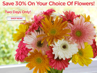 Organic Bouquet: 30% Off Flowers