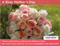 Organic Bouquet: Same Day Delivery Available