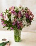 Organic Bouquet: 40% Off Alstromeria Peruvian Lilies