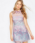 Asos: ASOS Contrast Embroidered Collar Organza Mini Skater Dress