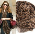 Ebay: Top Selling - Women's Leopard Long Soft Scarf $0.99