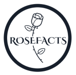 Click to Open Rosefacts Store
